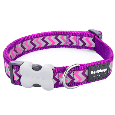Red Dingo Reflective Ziggy Purple Dog Collar
