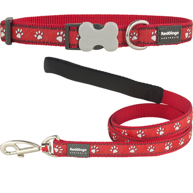 Red Dingo Desert Paw Dog Collar & Lead Set