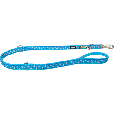 Red Dingo White Star on Turquoise Training Lead