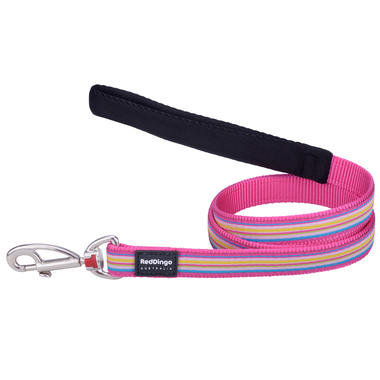 Red Dingo Stripe Dog Leads