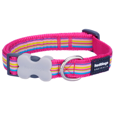 Red Dingo Stripe Dog Collar