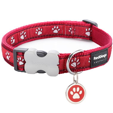 Red Dingo Desert Paw Collar & Tag