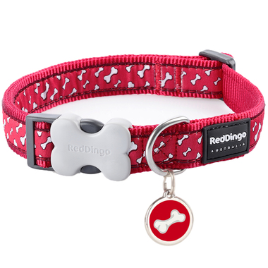 Red Dingo Flying Bones Collar & Tag