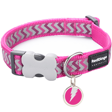 Red Dingo Reflective Ziggy Collar & Tag
