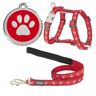 Red Dingo Desert Paw Dog Harness, Lead & Tag Set