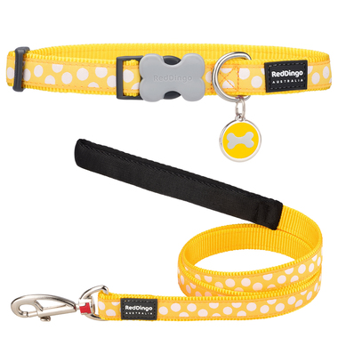 Red Dingo Spot Dog Collar, Lead & Tag Set