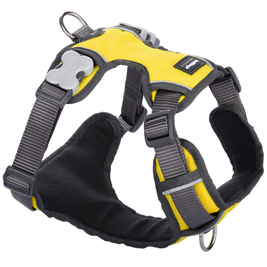 Red Dingo Yellow Padded Harness