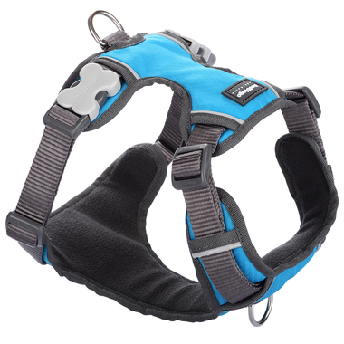 Red Dingo Turquoise Padded Harness
