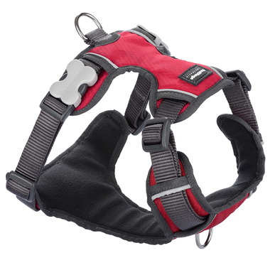 Red Dingo Red Padded Harness