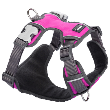 Red Dingo Hot Pink Padded Harness