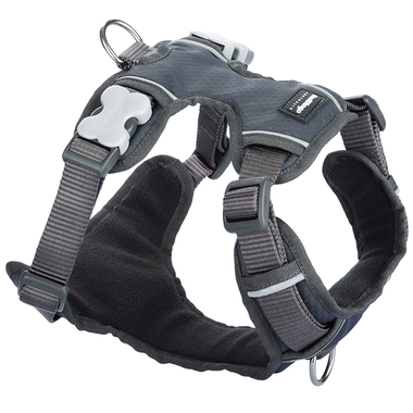 Red Dingo Grey Padded Harness