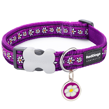 Red Dingo Daisy Chain Purple Collar & Tag