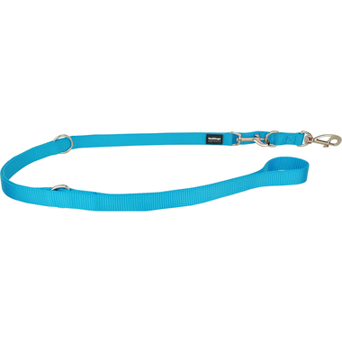 Red Dingo Turquoise Training Lead