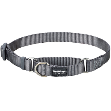 Red Dingo Classic Grey Martingale Dog Collar