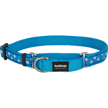 Red Dingo White Stars on Turquoise Martingale Dog Collar