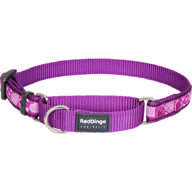 Red Dingo Breezy Love Purple Martingale Dog Collar