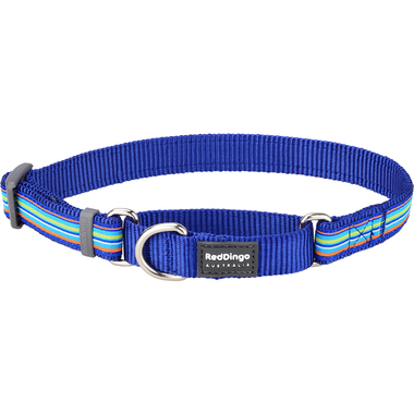 Red Dingo Horizontal Dark Blue Stripe Martingale Dog Collar