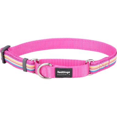 Red Dingo Horizontal Hot Pink Stripe Martingale Dog Collar