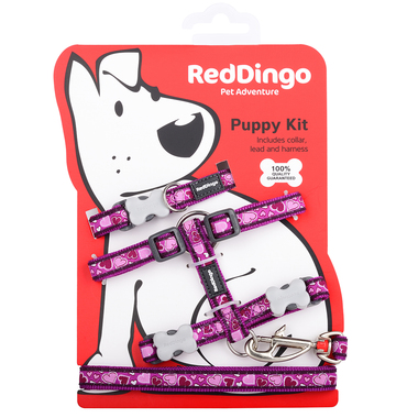 Red Dingo Breezy Love Purple Puppy Pack (Collar, Lead & Harness)