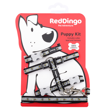 Red Dingo Bumble Bee Black Puppy Pack (Collar, Lead & Harness)
