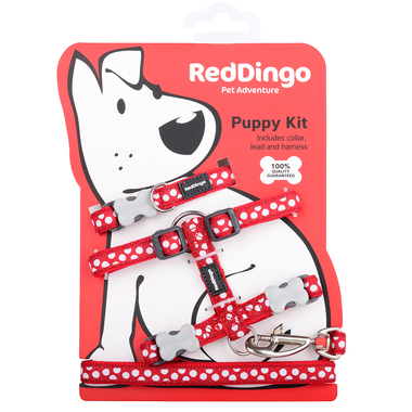 Red Dingo White Spots on Red Puppy Pack (Collar, Lead & Harness)