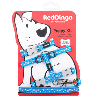 Red Dingo White Star On Turquoise Puppy Pack (Collar, Lead & Harness)