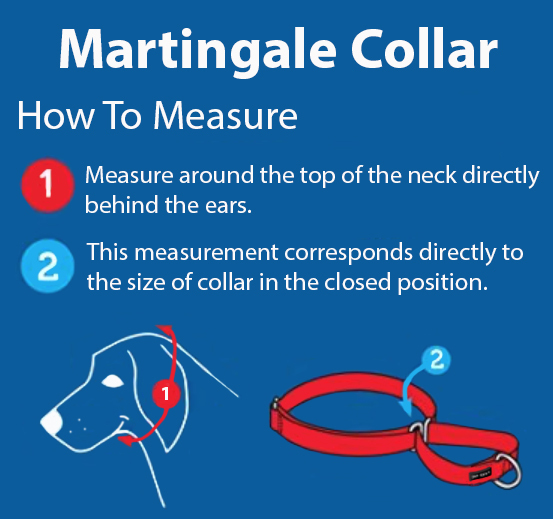 Martingale how to measure