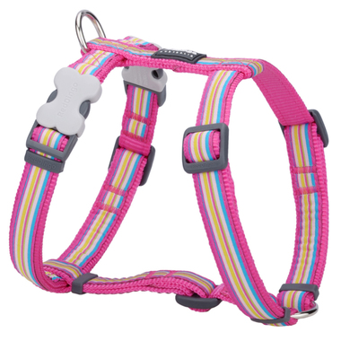 Red Dingo Hot Pink Stripes Dog Harness