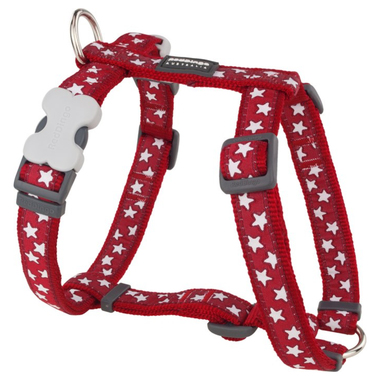 Red Dingo White Star on Red Dog Harness