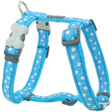 Red Dingo White Star on Turquoise Dog Harness