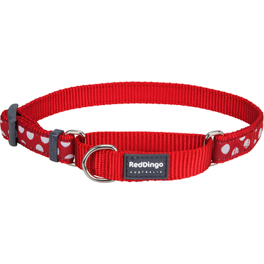 Red Dingo Spots Martingale Dog Collar