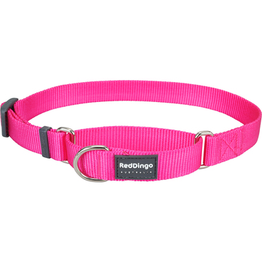 Red Dingo Classic Hot Pink Martingale Dog Collar