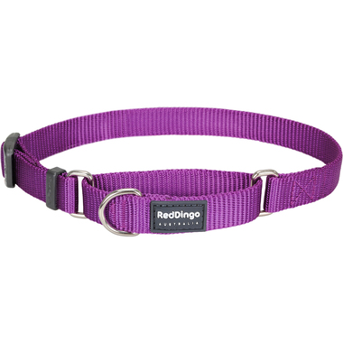 Red Dingo Classic Purple Martingale Dog Collar