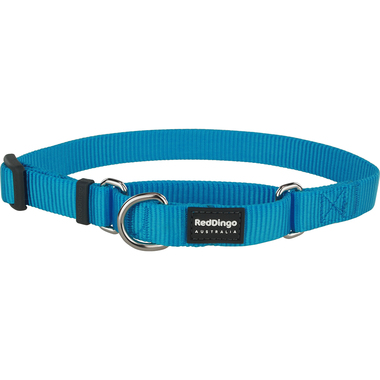 Red Dingo Classic Turquoise Martingale Dog Collar