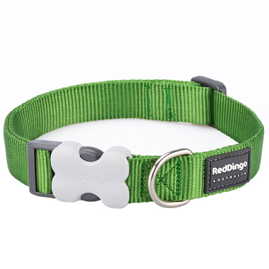 Red Dingo Plain Green Dog Collar