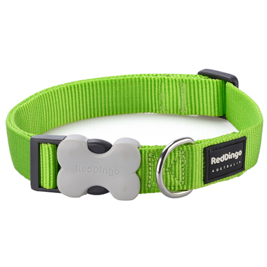 Red Dingo Plain Lime Green Dog Collar