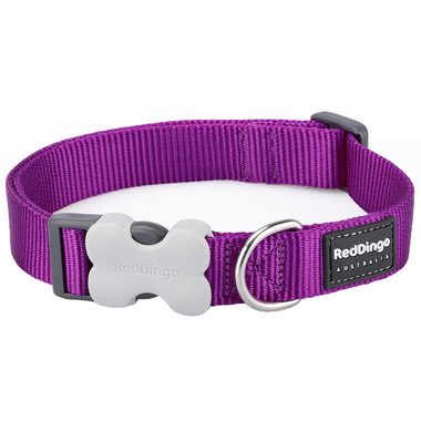 Red Dingo Plain Purple Dog Collar