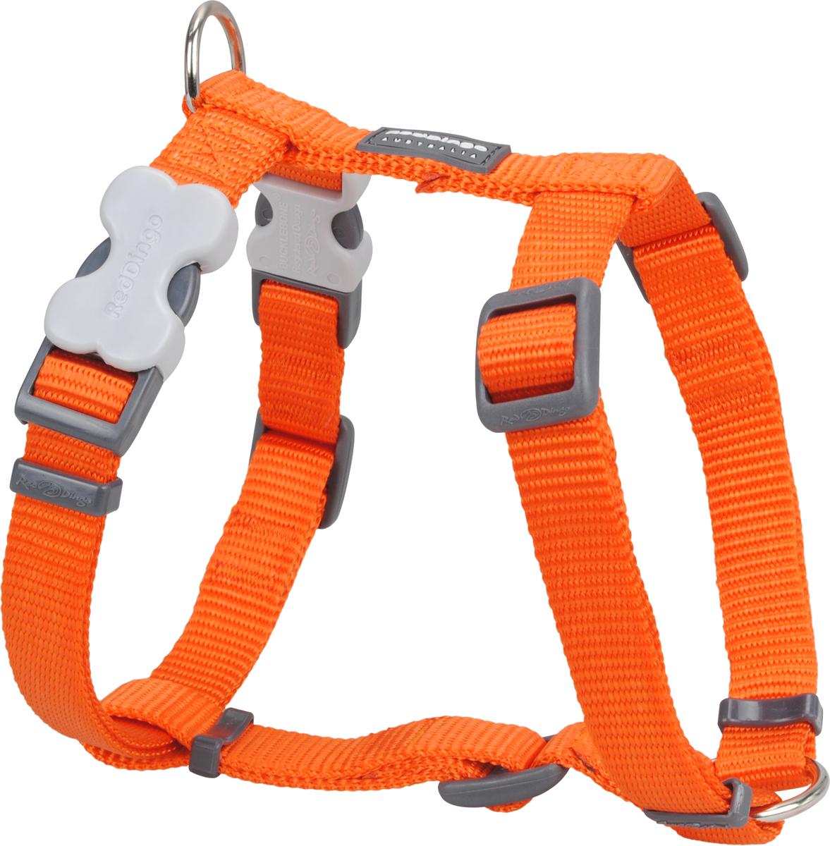 Orange Giant Dog Collar Uk