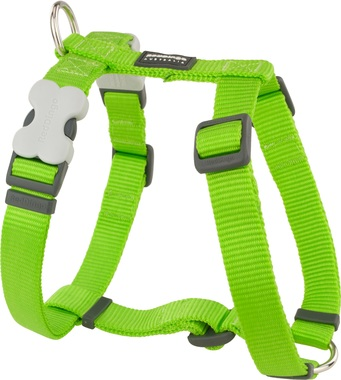 Red Dingo Plain Lime Green Dog Harness
