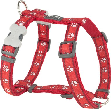 Red Dingo Desert Paw Dog Harness