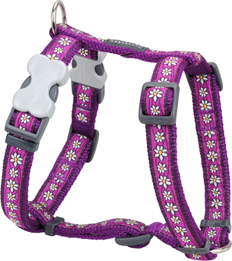 Red Dingo Daisy Chain Dog Harness